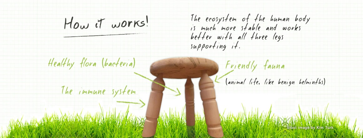 Biome_Home_Stool_Graphic_09_VN02