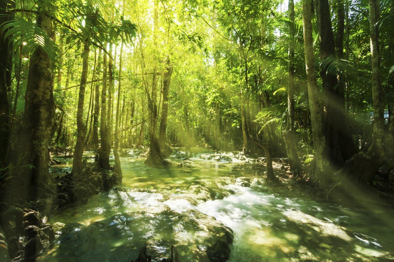 Beautiful sunray and waterfall in rainforest, Emerald Pool - Krabi - Thailand